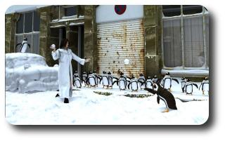 Season of the playful penguins