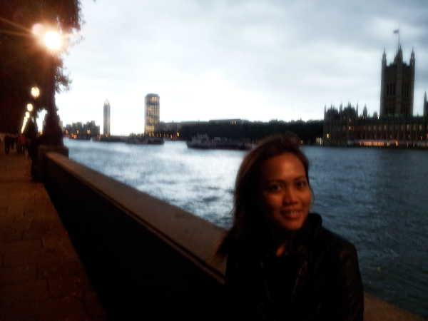 near london eye2