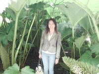 royal botanic garden 4